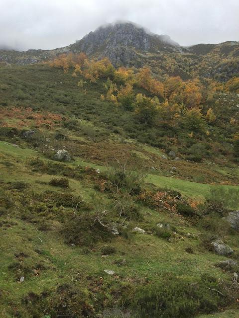 Ruta del Gumial en Felechosa (Asturias)