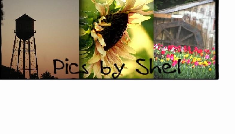 Pics by Shel