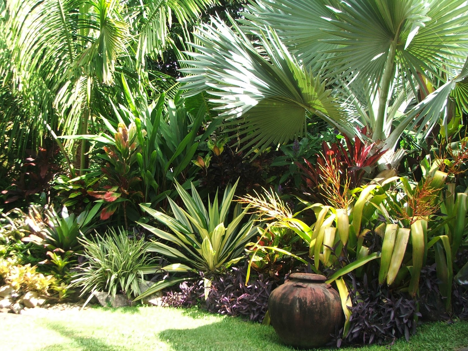 Onslow and miss b tropical paradise for Imagenes de patios y jardines