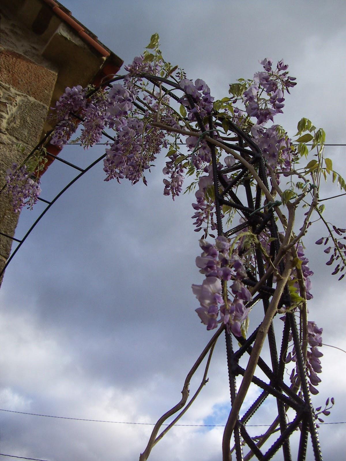 El rinc n de un aprendiz arco de hierro para el jard n for Arco decorativo jardin
