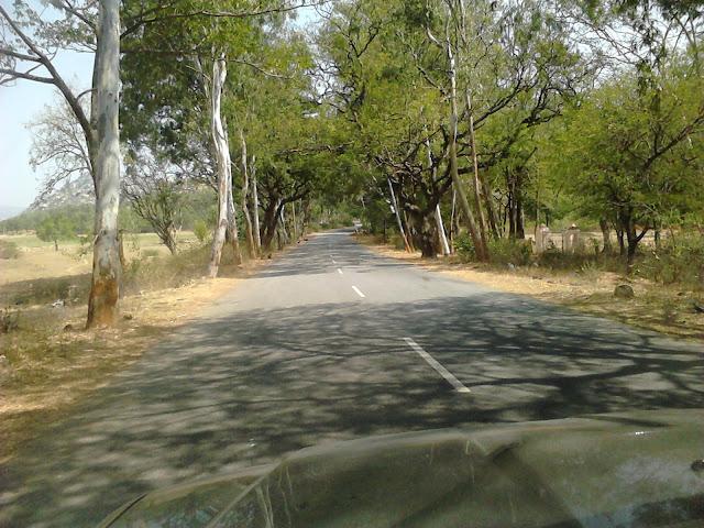 Beautiful Road to Horsley Hills