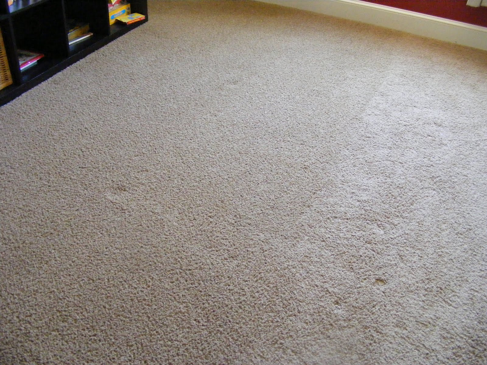how to clean your carpet without a vacuum