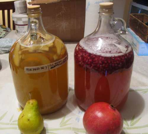 hidromiel fruta