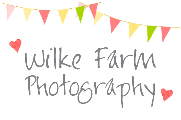 Wilke Farm Photography