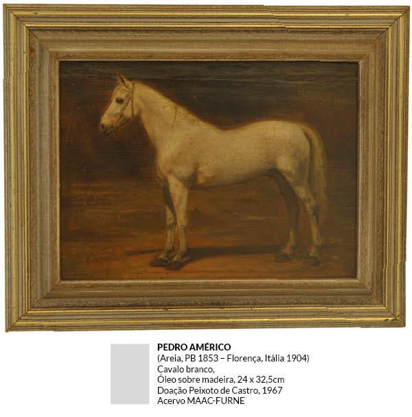 Pedro Américo - Cavalo Branco