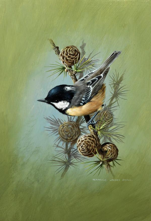 Картинки на декупаж птицы