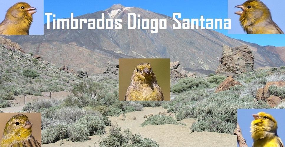 Timbrados Diogo Santana 3
