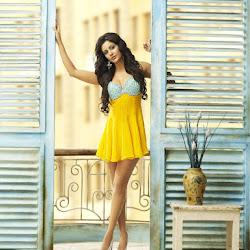 Priya Anand on G Venket Ram Calendar 2012 Photoshoot Stills