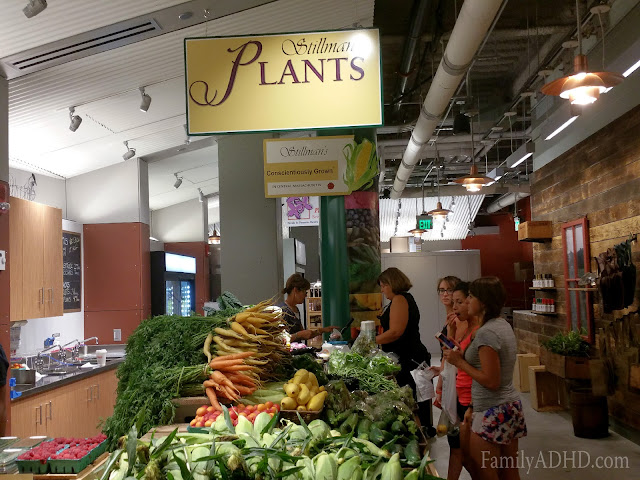 Stillman's Plants Boston Public Market indoor farmer's market open in Boston Blogger Tour