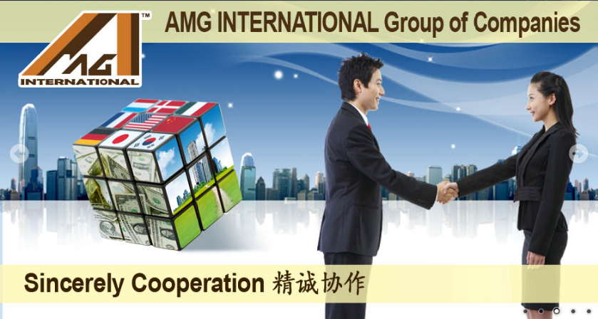 AMG INTERNATIONAL GROUP