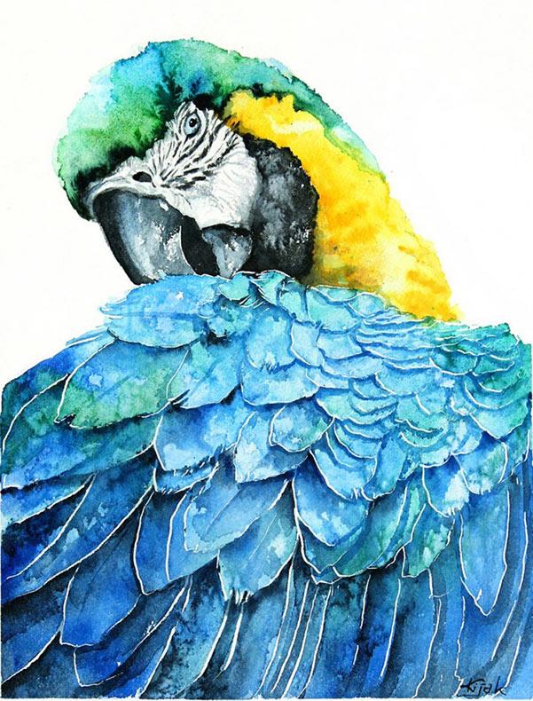 Elegantes acuarelas de aves por Karolina Kijak