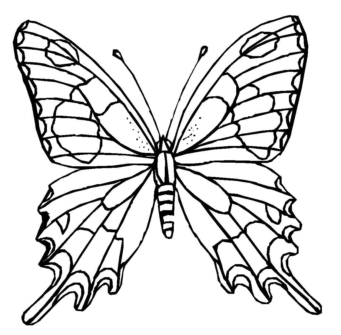colours drawing wallpaper Butterfly