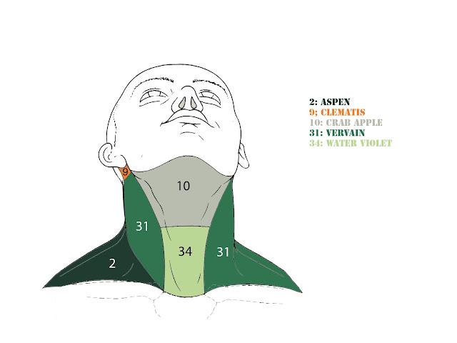 Il dolore su un collo dà a un orecchio al di sinistra