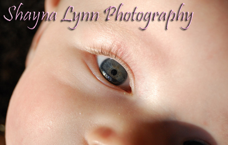 Shayna Lynn Photography