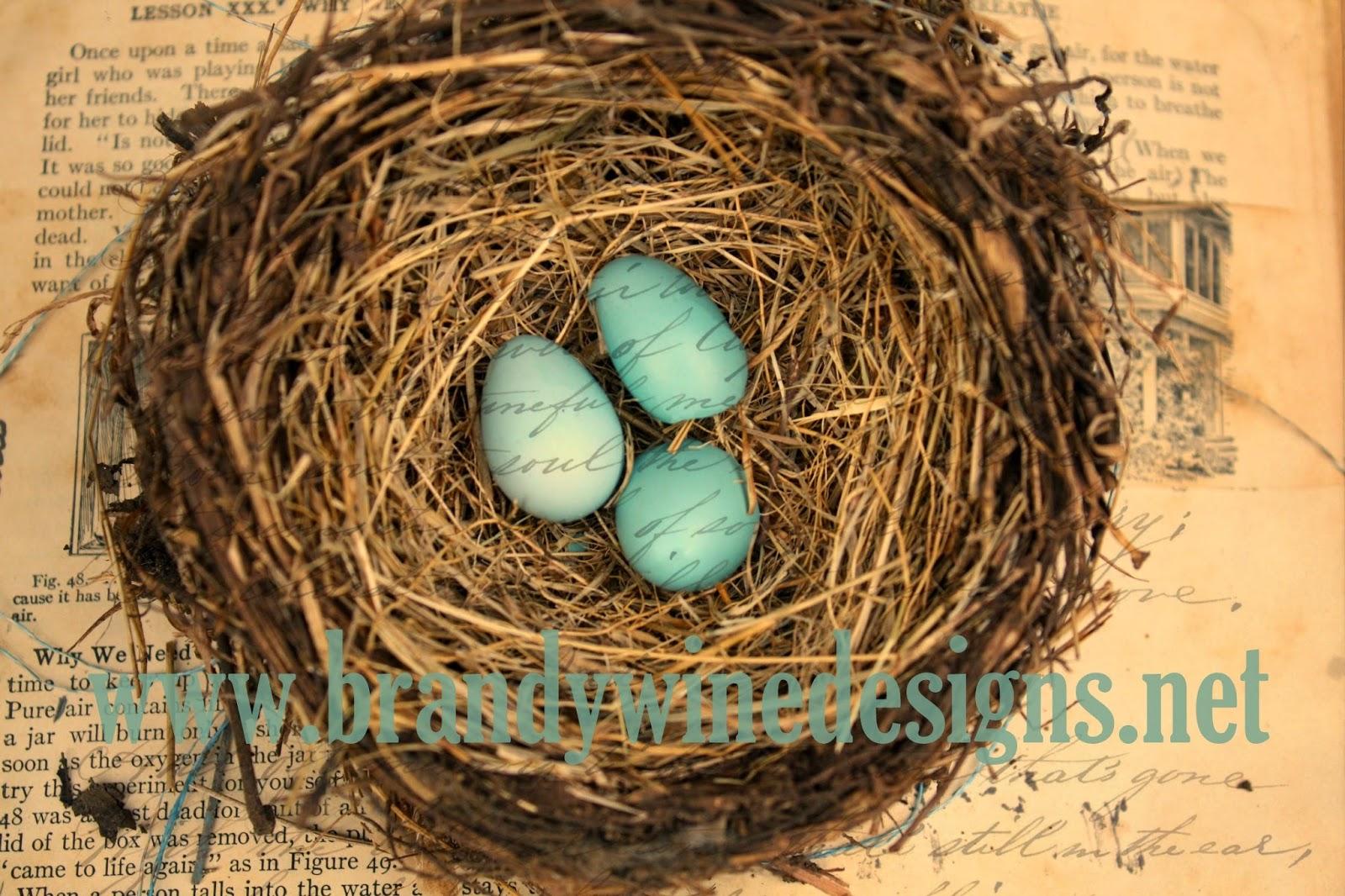 www.brandywinedesigns.net