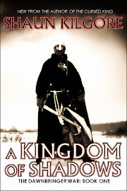 A Kingdom Of Shadows