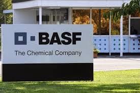 Offerte lavoro BASF con apprendistato per Laureati