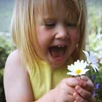 Viver em alegria