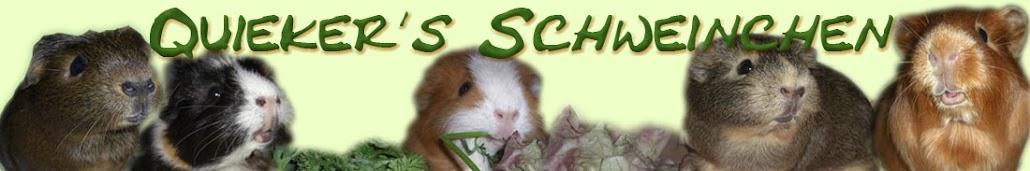 Quieker's Schweinchen
