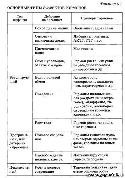 Основы рисунка для учеников 5-8 классов