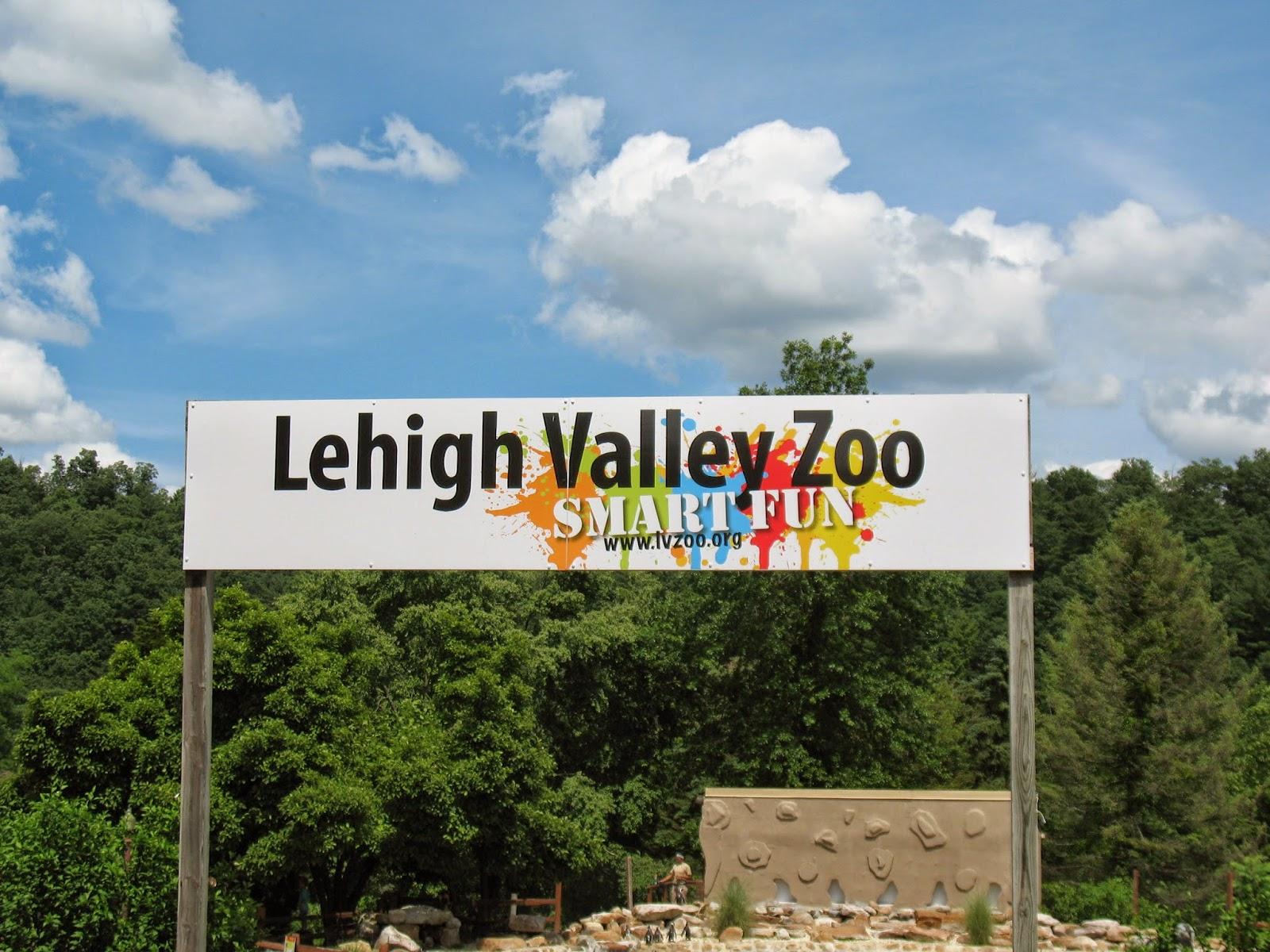 lehigh valley zoo christmas lights