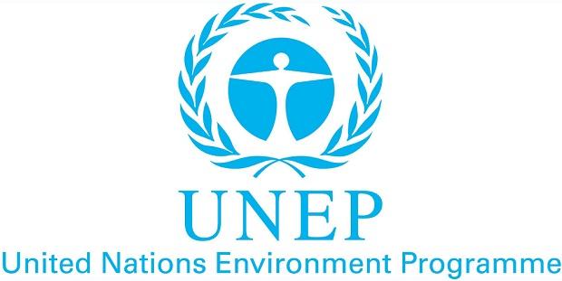 thagaste programme des nations unies pour l 39 environnement. Black Bedroom Furniture Sets. Home Design Ideas