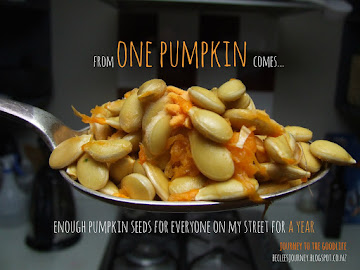From one pumpkin comes...