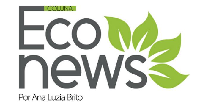 Coluna Eco News