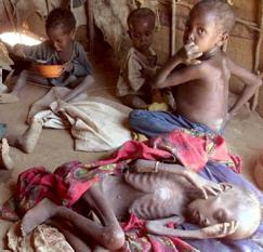 Desnutricion!!