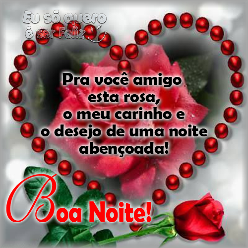 Pra você amigo esta rosa, o meu carinho e o desejo de uma noite abençoada!