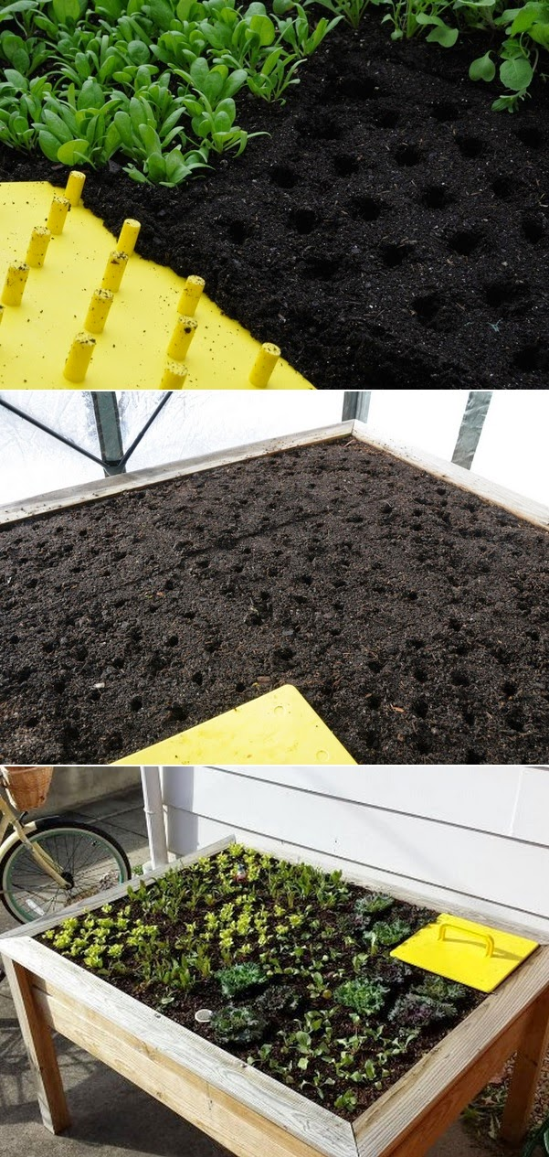 Fastest way to plant a raised garden bed #Organic ...