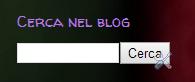 "Esempio del gadget ""Cerca nel blog"""