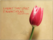 Love Wallpapers love wallpaper