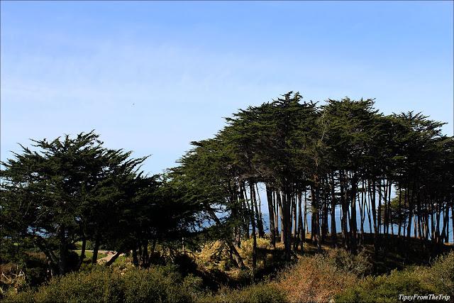 Seascape, Aptos, CA