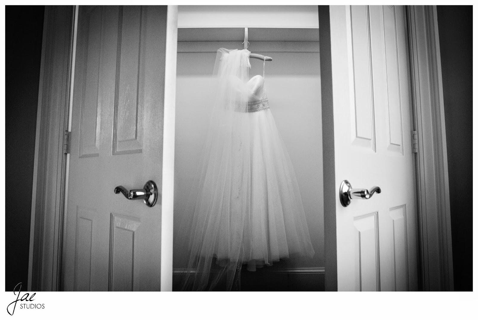 Jonathan and Julie, Bird cage, West Manor Estate, Wedding, Lynchburg, Virginia, Jae Studios, wedding dress, doors, opening, veil, black and white