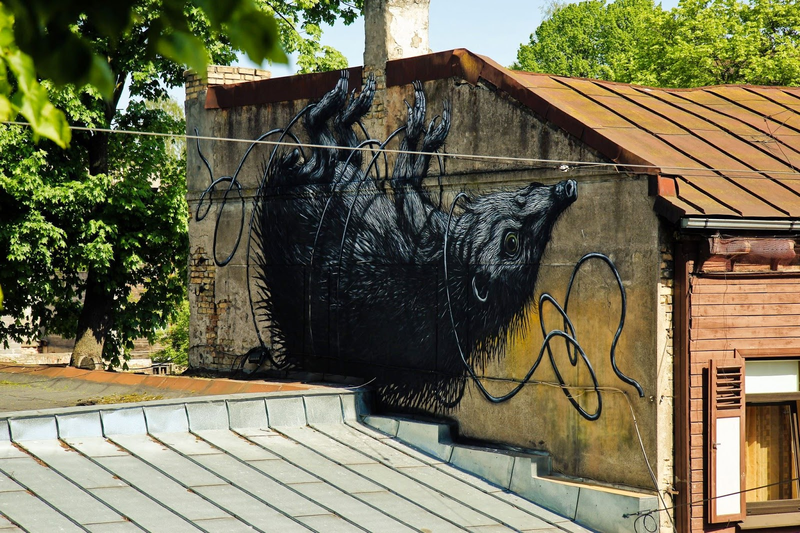Last seen in Spain last month (covered), ROA is now in Eastern Europe for the Blank Canvas Street Art Festival.