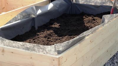 Bygga odlingslådor på ben