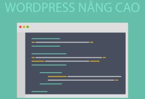 Hướng dẫn tra cứu WordPress với WordPress Codex