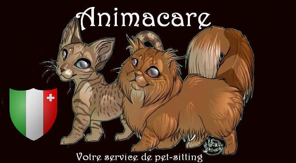 Cat-sitting, garde chats canton de Neuchâtel