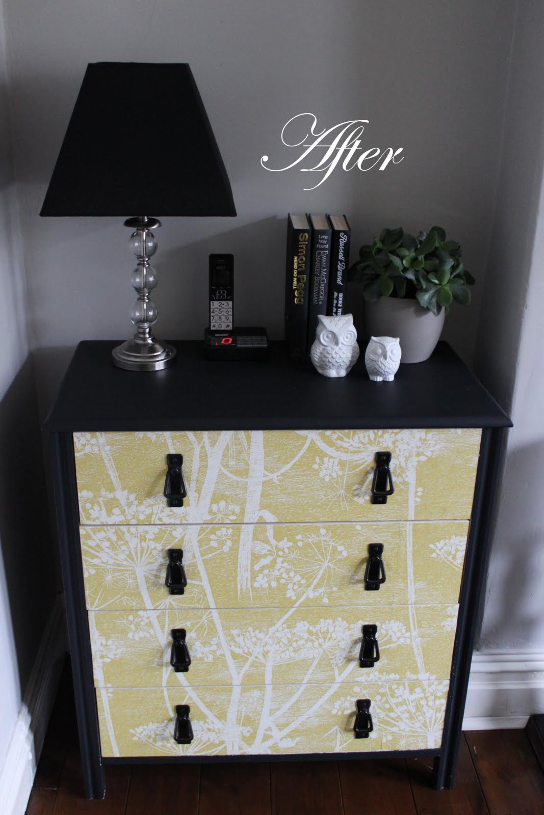 http://1.bp.blogspot.com/-8VnLlDXrt10/TmfEc9DvlYI/AAAAAAAACIs/T2Nj8oPeuHo/s1600/Wallpapered+chest+of+drawers+after.jpg