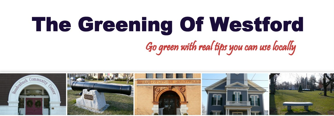 The Greening Of Westford
