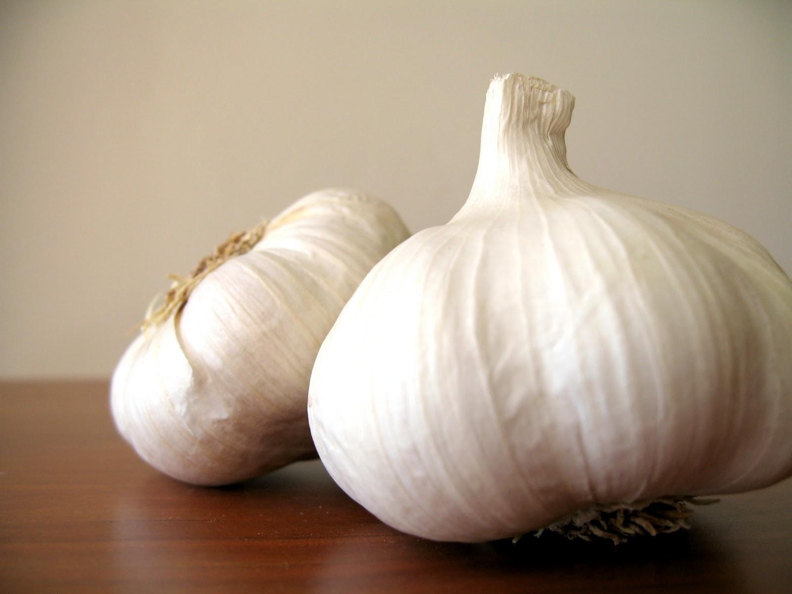 Apricosa: Garlic Tutorial