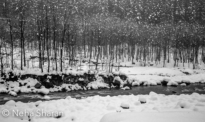 Recently Neha visited Manali, when seasons first snowfall happened. This Photo Journey shares some of the beautiful photographs of Manali town with white sheet all around. Manali town looks beautiful after fresh snowfall and that's when one can enjoy the snow in best way. Fresh snowfall makes a place beautiful and after a while the same snow creates mess, if not handled properly. Whenever Kullu valley gets snowfall, many of the tourists from Delhi, Chandigarh and various parts of Haryana/Punjab start moving towards Manali. Above photograph looks so poetic. Beas river surrounded by snow covered landscapes having symmetrical trees as a background.Usually tourists visit Rohtang Pass to see snow which is usually not that fresh. Fresh snow is always very special. It's fluffy texture makes it special. As it gets old, some part of the snow starts melting and it starts becoming ice which is hard. And after few days, dust starts settling down on this snow and it looks horrible. If you have ever visited Rohtang, you know what I am talking about.   Ten years back snowfall pattern was quite predictable and most of the times, snow used to happen in the month of december. Most of the tourists used to prefer Shimla  and Manali for Christmas or New Year vacations. For last few years, this pattern was broken and hills were getting first snowfall in January or February. Many of the folks associated with Tourism must be very happy this year. Snowfall  in the month of december is definitely a good indicator for a profitable tourist season.Hills around Manali look amazing after snowfall. But at the same time, it restrict you to move around. Most of the basic facilities get disrupted and connecting roads gets blocked. It becomes difficult to go to some of the interesting places like Naggar Castle, Solang Nala, Marhi, Rohtang, Manikaran, Kasol Malana etc. Snowfall in these hill stations is definitely very exciting for tourists, but for local folks it's a temporary fun and suddenly many of the facilities stop working for next few weeks. Electricity cuts become normal and imagine living around snow without electricity. Although folks have figured out right ways to deal with these situations but still not having electricity and water for 6 days is big deal.Thanks Neha for sharing these beautiful photographs from Manali.