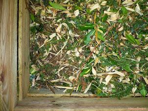 Jak zrobić kwaśny kompost