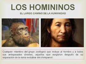 La tribu de los homininos
