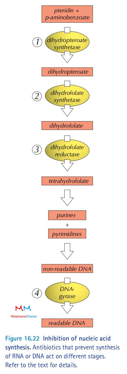 Biotech ciprofloxacin