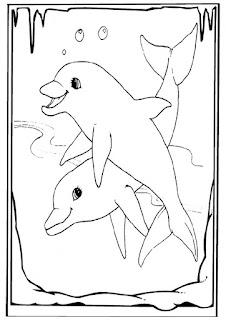 mewarnai gambar lumba-lumba