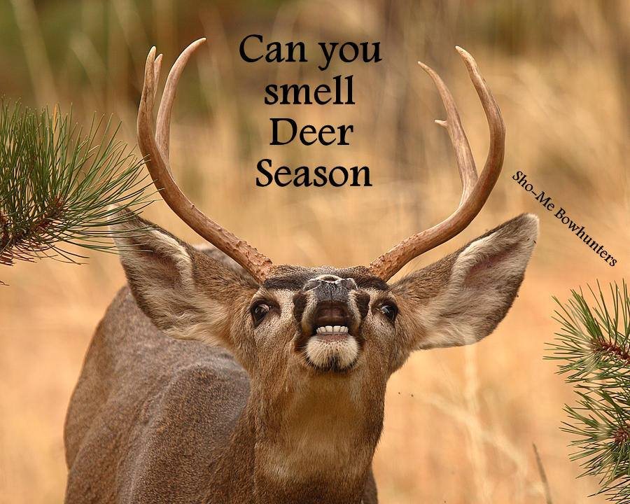 Quotes About Deer Season Quotesgram