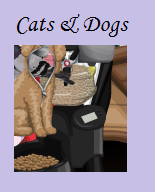 Verborgen winkel: Cats and Dogs