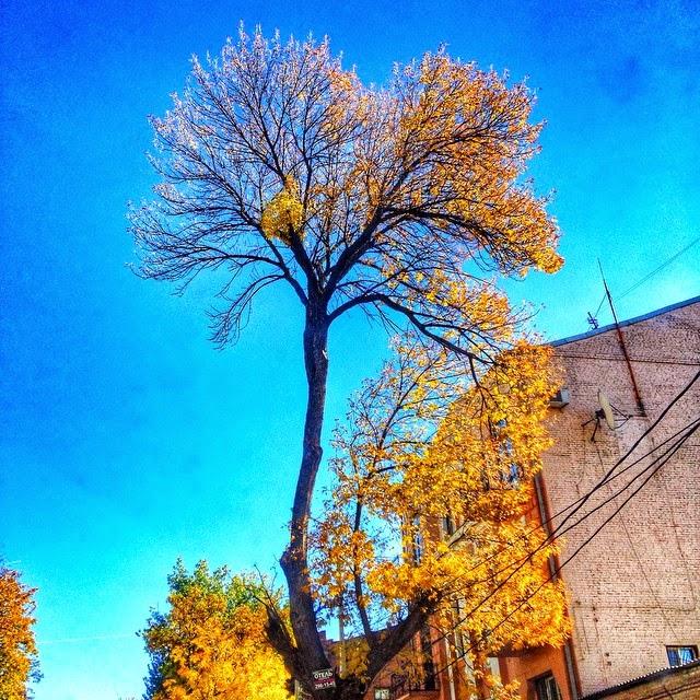 Осень-Ростов